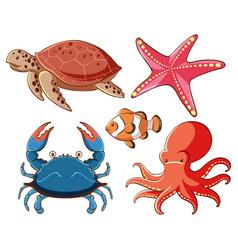 isolated set sea animals on white background vector image
