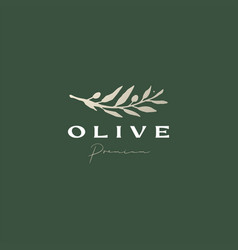 Olive branch sophisticated aesthetic logo icon vector