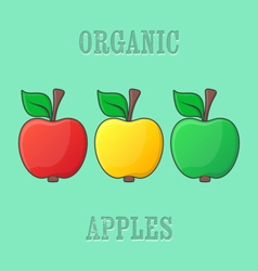 Red yellow green apples vector image