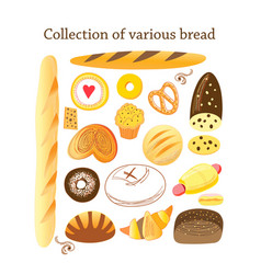set different bread vector image