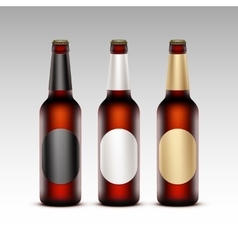 Set of Glass Brown Bottles Red Beer with labels vector image