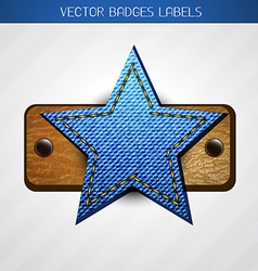 star label design vector image