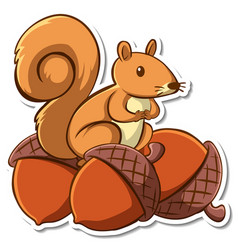 sticker design with a squirrel on many acorns vector image