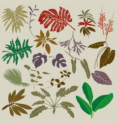 Tropical collection with branches exotic flower vector