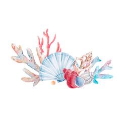 Watercolor coral composition vector