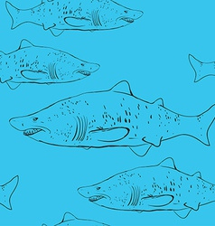 Sharks in the water Black outline on the blue vector image