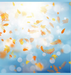 autumn template with colorful leaves on gold bokeh vector image