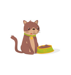 brown cat sitting next to bowl full of food vector image
