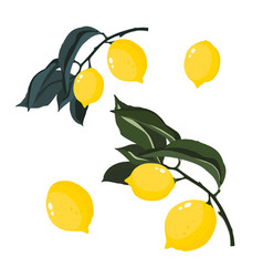 colorful hand drawn branches lemons isolated vector image