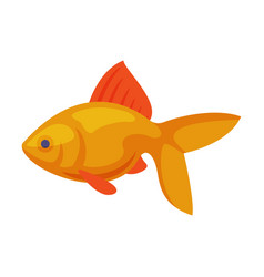 Gold fish toy for cats pet stuff cartoon style vector