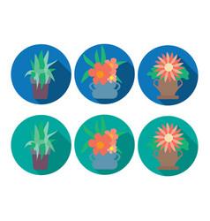 houseplant set design flat concept icon plant vector image