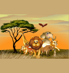 Many wild animals in savanna field vector