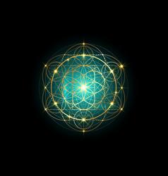 Seed life symbol sacred geometry mystic mandala vector