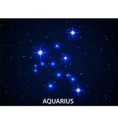 Set of Symbol Zodiac Aquarius vector image