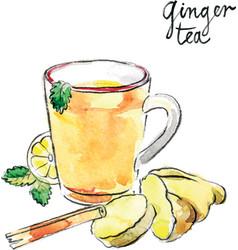 Watercolor ginger tea vector