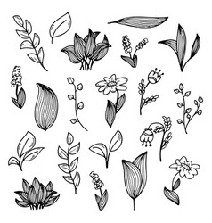 A set hand-drawn doodles flowers and plants vector