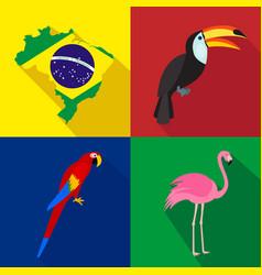 Brazil toucan parrot flamingo summer time vector