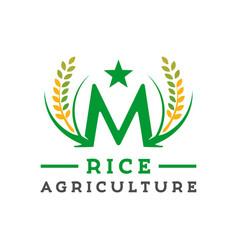 Design letter m logo rice farming vector