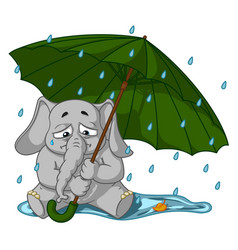 elephant crying under an umbrella autumn rain vector image