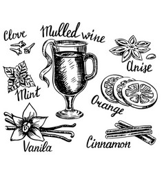 Ink hand drawn style mulled wine set vector