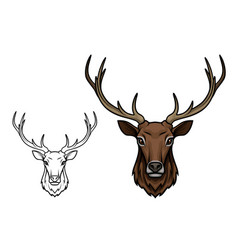 deer antlers muzzle isolated sketch icon vector image