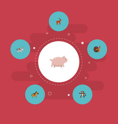 flat icons swine kine chimpanzee and other vector image