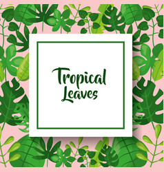 tropical leaves greeting card green vector image vector image