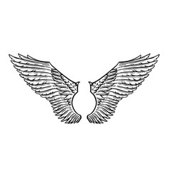 angel wing in vintage style template for tattoo vector image