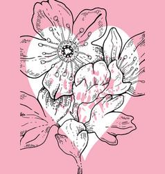 hand drawn sakura cherry flowers whith heart vector image