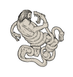 Hercules fighting lernaean hydra drawing vector