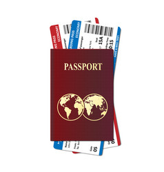 international passport with vector image