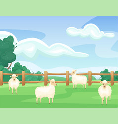 Landscape a green summer field with sheeps vector