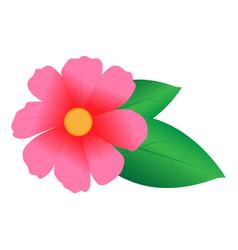 pink flower pink flower vector image