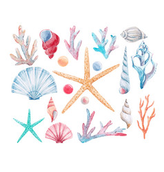 Watercolor coral set vector