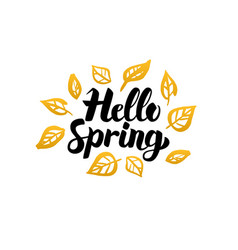 hello spring gold greeting card vector image vector image