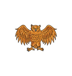 Angry Owl Wings Spread Drawing vector image vector image