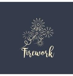 Firework company logo design on dark vector image