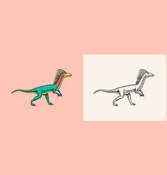 Dinosaurs deinonychus skeletons fossils vector