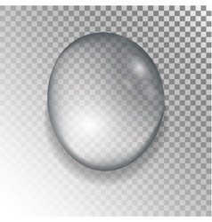 Drops of water on a transparent background vector image