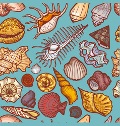 Ocean cockleshell and seashell seamless pattern vector