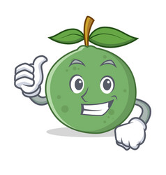 Thumbs up guava character cartoon style vector