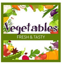 vegetables frame market or grocery store harvest vector image