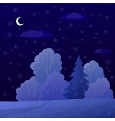 Christmas Landscape Night Forest vector image