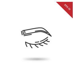 human eyebrow icon vector image