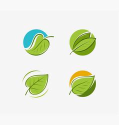 leaf logo nature eco symbol or label vector image