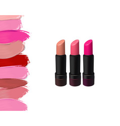 lipstick set on white background beauty vector image