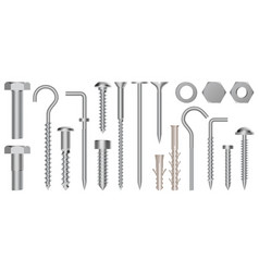 realistic 3d screws and bolts hardware stainless vector image