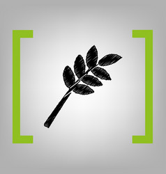 tree branch sign black scribble icon in vector image