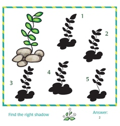 Find the shadow of picture vector image vector image