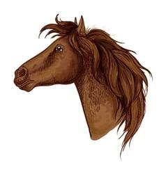Brown graceful royal horse portrait vector image